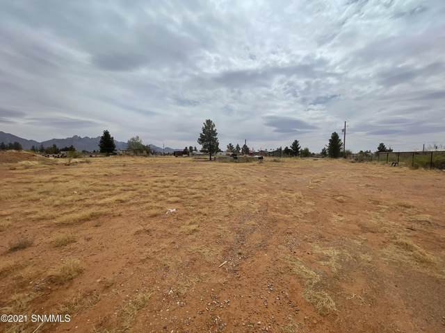 7888 Moore Circle, Las Cruces, NM 88012 (MLS #2101194) :: Las Cruces Real Estate Professionals