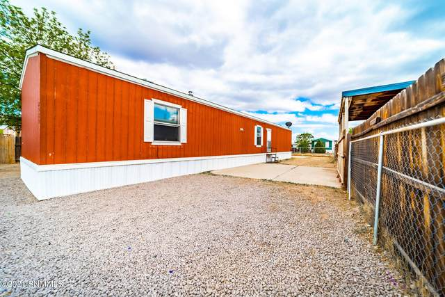 2515 Sonrisa Loop, Las Cruces, NM 88007 (MLS #2101219) :: Better Homes and Gardens Real Estate - Steinborn & Associates