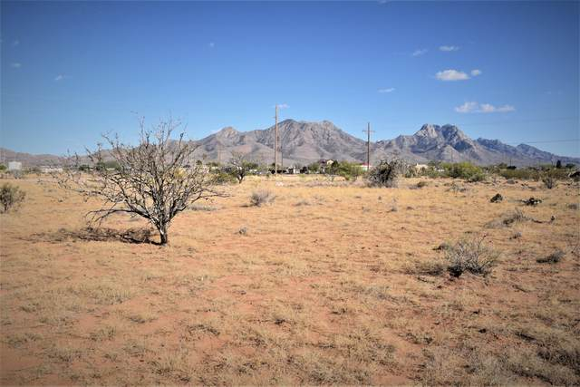 9681 Tres Yuccas Road, Las Cruces, NM 88012 (MLS #2101224) :: Agave Real Estate Group