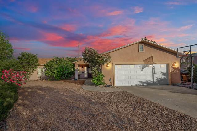 4226 Trillium Drive, Las Cruces, NM 88007 (MLS #2101234) :: Agave Real Estate Group