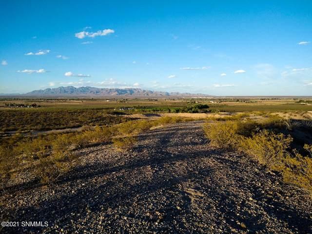6745 Camino Seguro, La Mesa, NM 88044 (MLS #2101247) :: Better Homes and Gardens Real Estate - Steinborn & Associates