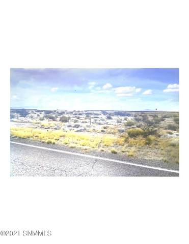 101 Muffy Rd, Deming, NM 88030 (MLS #2101279) :: Better Homes and Gardens Real Estate - Steinborn & Associates