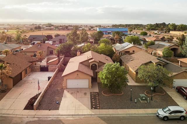 106 Desert Sage Court, Sunland Park, NM 88008 (MLS #2101344) :: Better Homes and Gardens Real Estate - Steinborn & Associates
