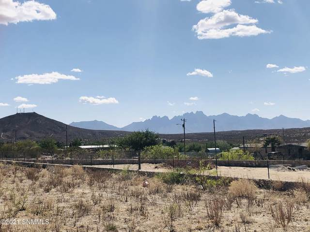 5704 Cedarwood Court, Las Cruces, NM 88012 (MLS #2101345) :: Better Homes and Gardens Real Estate - Steinborn & Associates