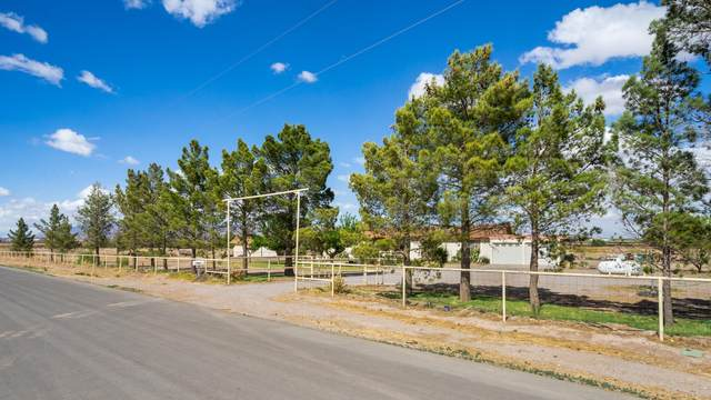 600 Mustang Road, Vado, NM 88072 (MLS #2101348) :: Better Homes and Gardens Real Estate - Steinborn & Associates