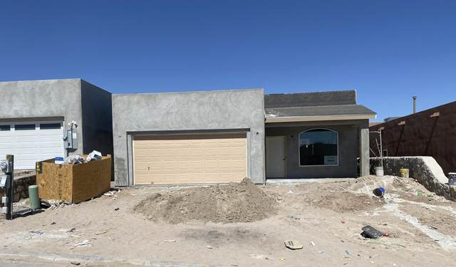 2992 Don Buck Drive, Las Cruces, NM 88011 (MLS #2101356) :: Agave Real Estate Group