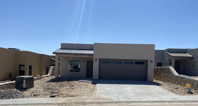 2987 Don Buck Drive, Las Cruces, NM 88011 (MLS #2101359) :: Better Homes and Gardens Real Estate - Steinborn & Associates