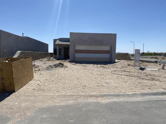 2999 Don Buck Drive, Las Cruces, NM 88011 (MLS #2101360) :: Better Homes and Gardens Real Estate - Steinborn & Associates