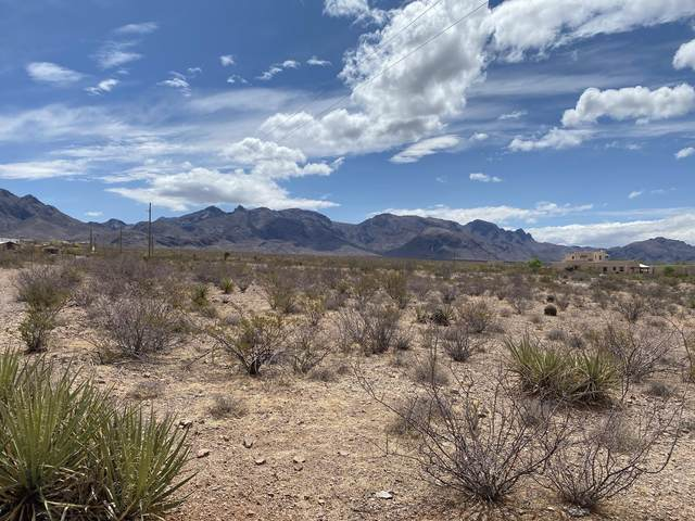 00 Achenbach Canyon Road, Las Cruces, NM 88011 (MLS #2101361) :: Agave Real Estate Group