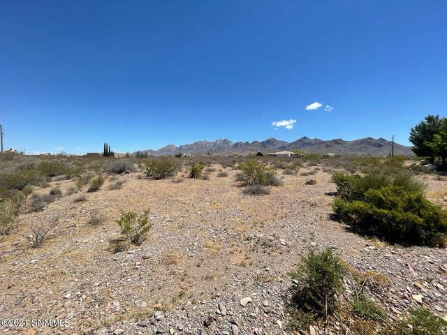 000 Rock House Road, Las Cruces, NM 88011 (MLS #2101384) :: Agave Real Estate Group
