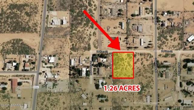5130 De Vaca Court, Las Cruces, NM 88012 (MLS #2101416) :: Better Homes and Gardens Real Estate - Steinborn & Associates