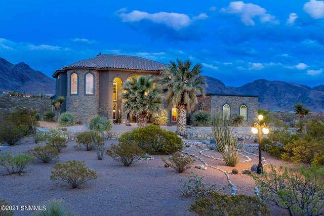 5041 Diamond Mine Road, Las Cruces, NM 88011 (MLS #2101424) :: Agave Real Estate Group