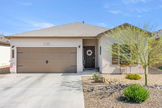 4827 Sirocco Avenue, Las Cruces, NM 88012 (MLS #2101491) :: Better Homes and Gardens Real Estate - Steinborn & Associates