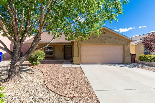 2957 Onate Road, Las Cruces, NM 88007 (MLS #2101501) :: Better Homes and Gardens Real Estate - Steinborn & Associates