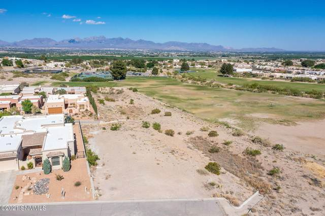1284 Bazille Place, Las Cruces, NM 88007 (MLS #2101505) :: Better Homes and Gardens Real Estate - Steinborn & Associates