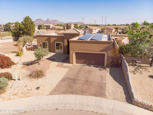 4384 Camino Dos Vidas, Las Cruces, NM 88012 (MLS #2101509) :: Better Homes and Gardens Real Estate - Steinborn & Associates