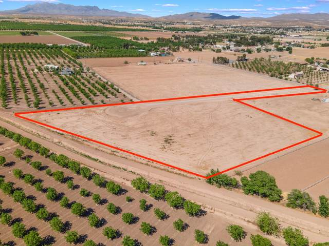0000 Green Meadow Road, Anthony, NM 88021 (MLS #2101513) :: Better Homes and Gardens Real Estate - Steinborn & Associates