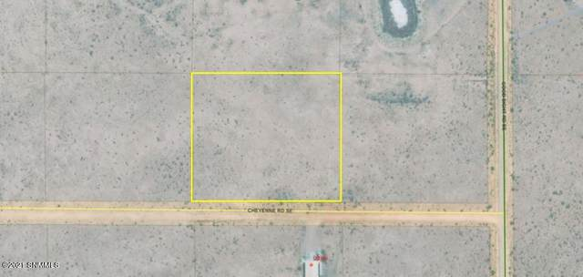 0000 Cheyenne, Deming, NM 88030 (MLS #2101645) :: Agave Real Estate Group