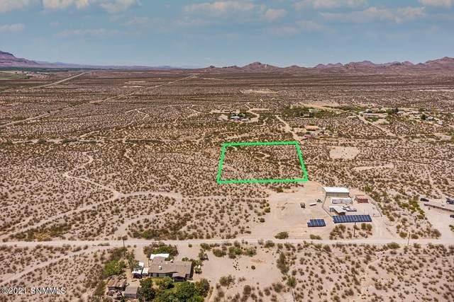 000 Desert Spriggs, Las Cruces, NM 88012 (MLS #2101693) :: Better Homes and Gardens Real Estate - Steinborn & Associates