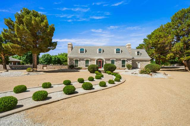 4899 Raintree Lane, Las Cruces, NM 88007 (MLS #2101718) :: Better Homes and Gardens Real Estate - Steinborn & Associates