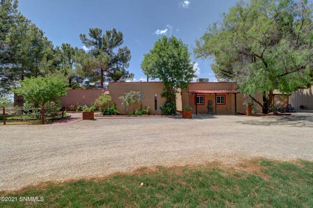 1575 Snow Road, Las Cruces, NM 88005 (MLS #2101726) :: Better Homes and Gardens Real Estate - Steinborn & Associates
