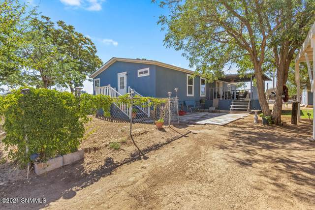 202 Jarmon Road, Mesquite, NM 88048 (MLS #2101732) :: Better Homes and Gardens Real Estate - Steinborn & Associates