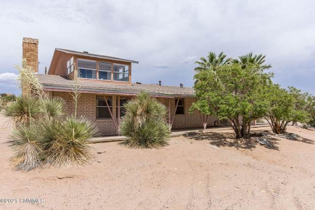 1805 Westmoreland Avenue, Las Cruces, NM 88012 (MLS #2101733) :: Agave Real Estate Group