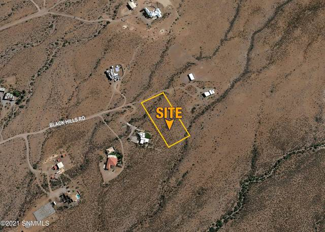 13020 Black Hills Road, Las Cruces, NM 88011 (MLS #2101745) :: Better Homes and Gardens Real Estate - Steinborn & Associates