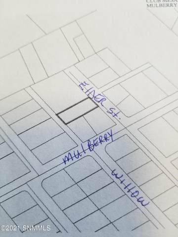 0000 Elder Street, Las Cruces, NM 88001 (MLS #2101762) :: Las Cruces Real Estate Professionals