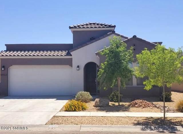 6022 Catalina St. Street, Las Cruces, NM 88012 (MLS #2101803) :: Las Cruces Real Estate Professionals