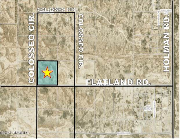 6425 Flatland Rd., Las Cruces, NM 88012 (MLS #2101806) :: Better Homes and Gardens Real Estate - Steinborn & Associates