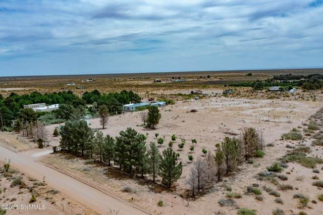 1064 Salsa Street, Chaparral, NM 88081 (MLS #2101811) :: Better Homes and Gardens Real Estate - Steinborn & Associates