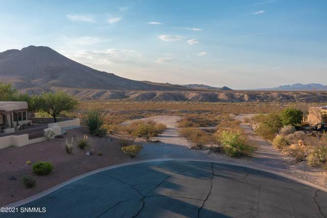 6730 Desert Blossom Road, Las Cruces, NM 88007 (MLS #2101814) :: Better Homes and Gardens Real Estate - Steinborn & Associates