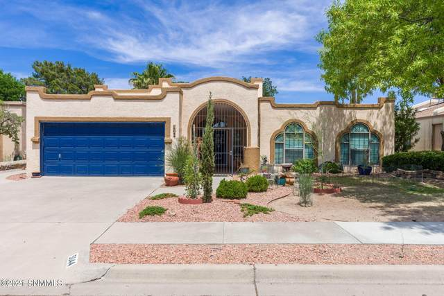 5044 Moon Shadow Place, Las Cruces, NM 88011 (MLS #2101837) :: Better Homes and Gardens Real Estate - Steinborn & Associates