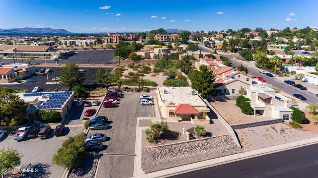 3015 Hillrise Drive, Las Cruces, NM 88011 (MLS #2101839) :: Better Homes and Gardens Real Estate - Steinborn & Associates