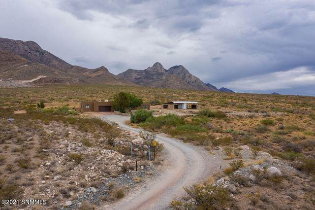 4590 Round Up Road, Las Cruces, NM 88011 (MLS #2101848) :: Better Homes and Gardens Real Estate - Steinborn & Associates