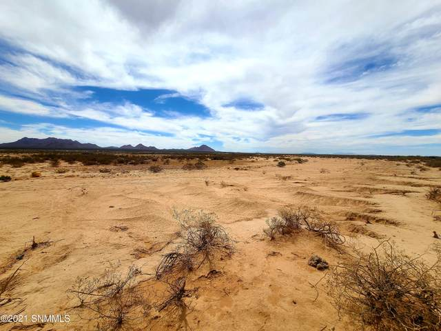 150 Outback Drive, Las Cruces, NM 88012 (MLS #2101865) :: Las Cruces Real Estate Professionals