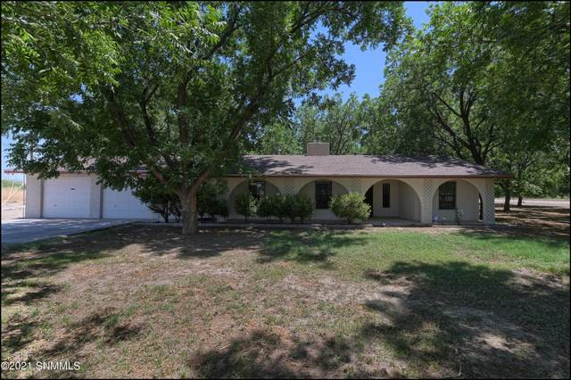 2456 W Ohara Road, Anthony, NM 88021 (MLS #2101886) :: Agave Real Estate Group