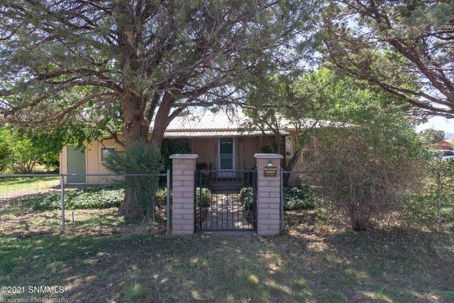 187 State Hwy 80, Rodeo, NM 88056 (MLS #2101930) :: Agave Real Estate Group
