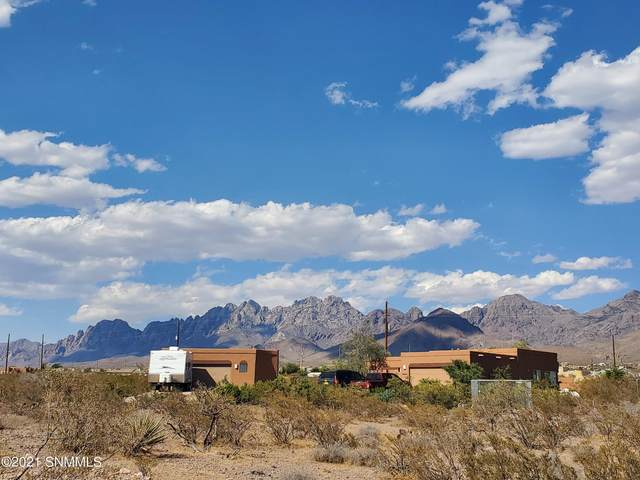 5185 Lost Padre Mine Road, Las Cruces, NM 88011 (MLS #2102001) :: Agave Real Estate Group