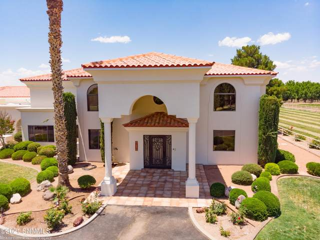 1583 Paisano Road, Las Cruces, NM 88005 (MLS #2102013) :: Better Homes and Gardens Real Estate - Steinborn & Associates