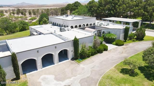 1 Trevington Place, Santa Teresa, NM 88008 (MLS #2102026) :: Better Homes and Gardens Real Estate - Steinborn & Associates