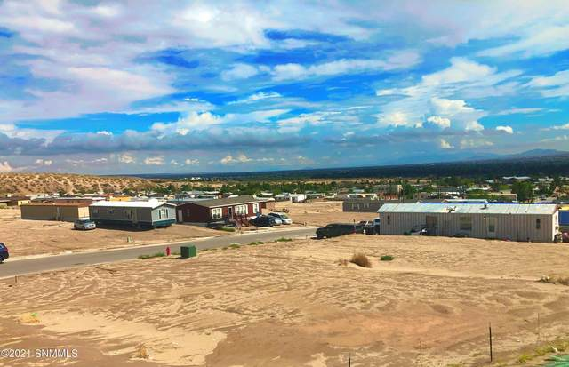 321 Sabine Drive, Sunland Park, NM 88063 (MLS #2102052) :: Las Cruces Real Estate Professionals