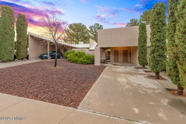 3220 Hillrise Avenue, Las Cruces, NM 88011 (MLS #2102143) :: Agave Real Estate Group