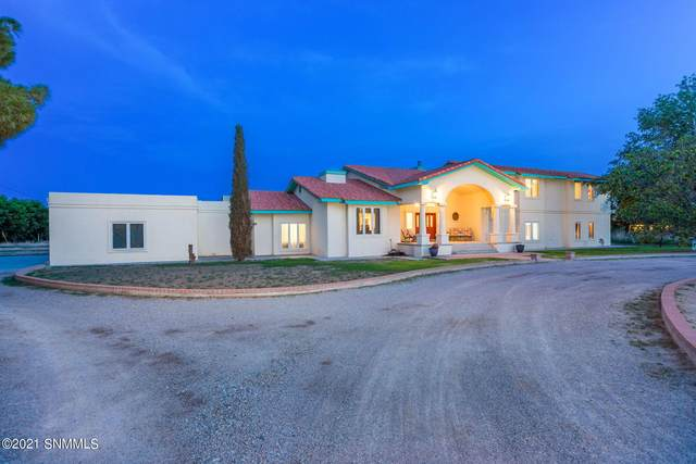 765 Pedro Madrid Road, Las Cruces, NM 88007 (MLS #2102220) :: Better Homes and Gardens Real Estate - Steinborn & Associates