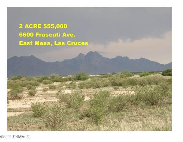 6600 Frascati Avenue, Las Cruces, NM 88012 (MLS #2102236) :: Las Cruces Real Estate Professionals