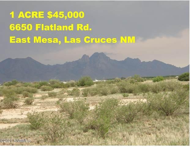 6650 Flatland Road, Las Cruces, NM 88012 (MLS #2102238) :: Las Cruces Real Estate Professionals