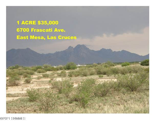 6700 Frascati Avenue, Las Cruces, NM 88012 (MLS #2102240) :: Las Cruces Real Estate Professionals