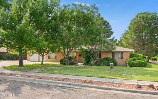 1850 Debby Circle, Las Cruces, NM 88005 (MLS #2102270) :: Better Homes and Gardens Real Estate - Steinborn & Associates