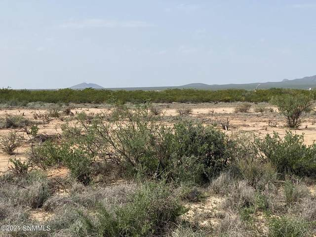 190 Outback Drive, Las Cruces, NM 88012 (MLS #2102292) :: Las Cruces Real Estate Professionals